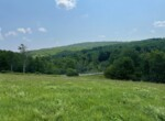 7.5 acre Forested and Open Land for Sale Norwich NY!