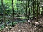 Hunting Land with Cleared Camp/Homesites, Views, and Power Available!