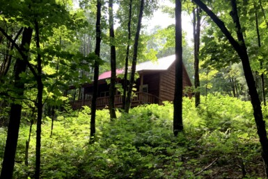 7.6 acres Secluded Woodland Camp Camden NY