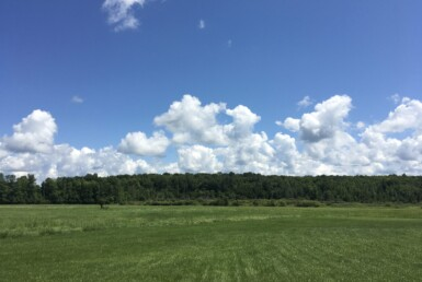 12 Acre Country Building Lot Canton NY
