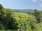10 acre Hunting Land For Sale in Norwich, NY!