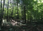 33 acres Land for Sale with Camper on the Oswegatchie River, Harrisville, NY!
