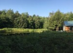 24 acres Hunting Land For Sale with Camp and Pond Russell NY!