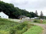 Country Home or Agri-Business with 2 Barns, Pastures, and Greenhouse!