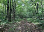 46 acres Hunting Land on ATV Trail Williamstown NY