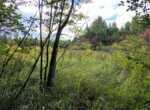 67 Acre Remote Wilderness Hunting Land for Sale, Diana, NY!
