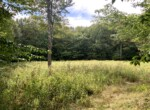 46 acre Hunting Land for Sale on ATV Trail with Camper Williamstown NY!