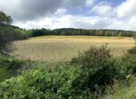 51 acres Hunting and Farmland for Sale Bordering State Land, Cuyler, NY!